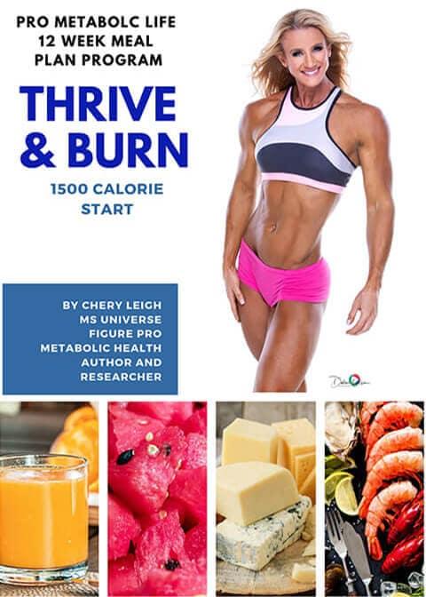 meal-plan-thrive-burn